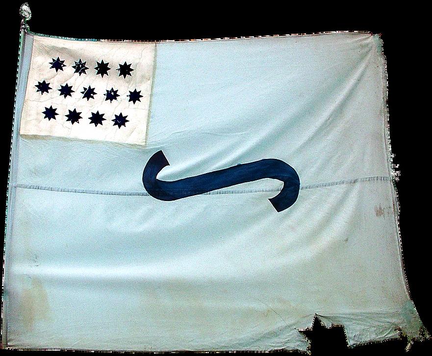 Flag 1 - Contrast Coloring - No Text cop