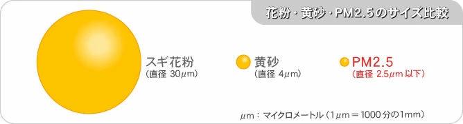 a04-9_size-pm_668.jpg