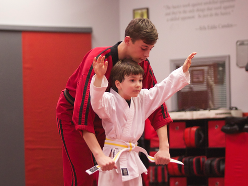 KIDS - Intro Martial Arts / Lil Dragons