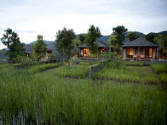 Muthi Maya Forest Pool Villa Resort 1.jp