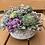Thumbnail: Succulent Centerpiece