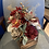 Thumbnail: Christmas Wood Box (Large)