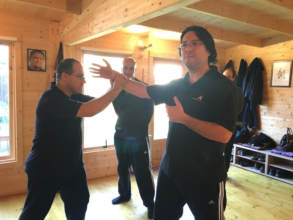 The Power of Tai Chi Rooting