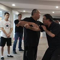 Master John Ding demonstrates