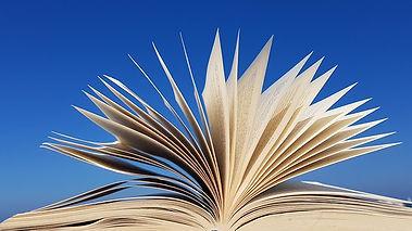 book-3720292__340.jpg