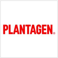 Plantagen Kaarina