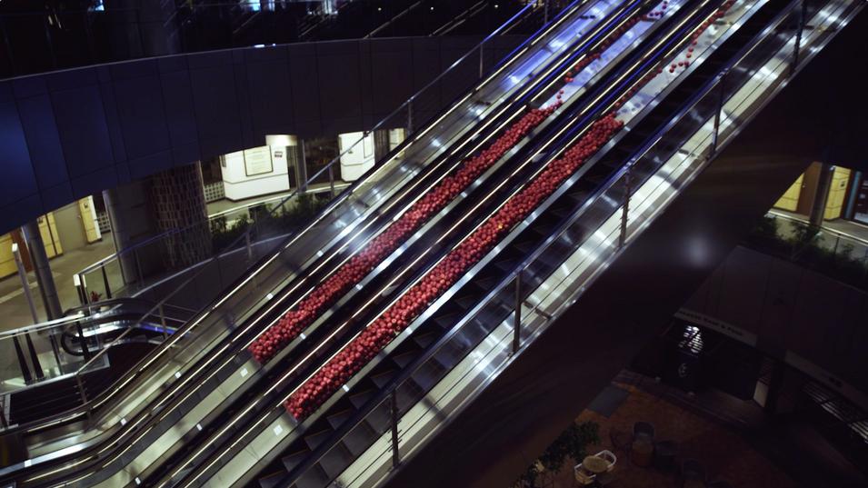 Escalator Museum