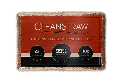 CleanStraw-PineBack-Cropped_v2-noshadow.