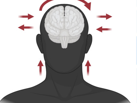 Physical training practices to reduce risk of sport brain injury: what do we know ?