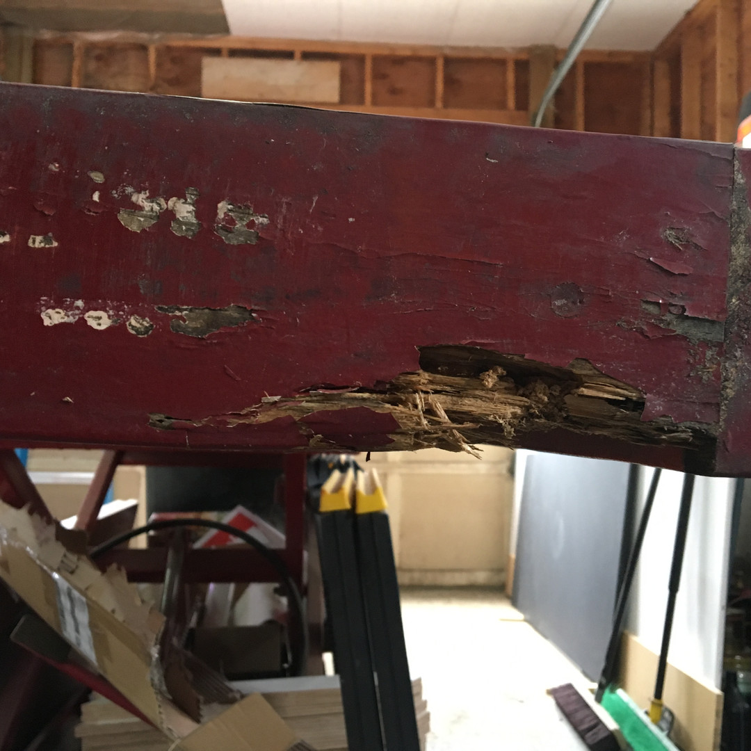 Rot on the trim board will not do. We will remove and replace with new trim