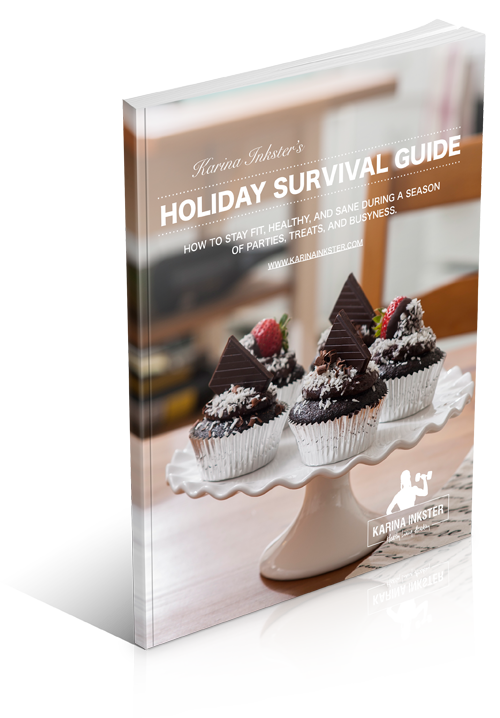 ebook Holiday Survival Guide by Karina Inkster