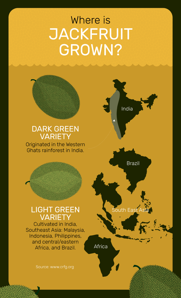 Facts about jackfruit