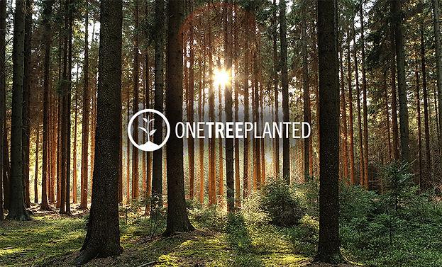 onetreeplanted.jpg