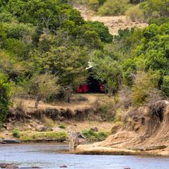 Mara Eden Safari Camp   MAREFU Safaris Keniareisen