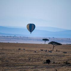 Heißluftballon Masai Mara   MAREFU Safaris Keniareisen