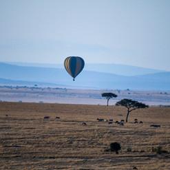 Heißluftballon Masai Mara | MAREFU Safaris Keniareisen