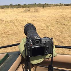 Masai Mara - Hotspot für Fotografen