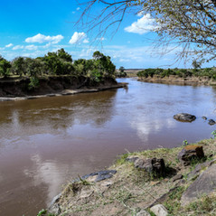 Der Mara River   MAREFU Safaris Keniareisen