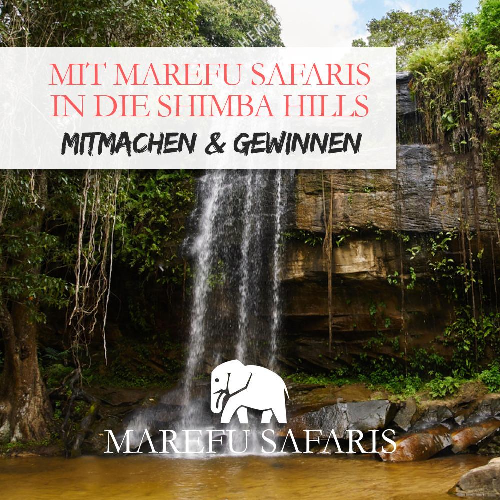 Die Shimba Hills Lodge im Shimba Hills Nationalpark Kenia | MAREFU SAFARIS