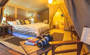 wildebeest_tented_camp_deluxe.png