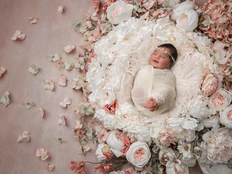 Newborn/ Baby Portrais