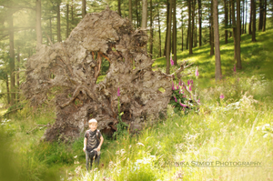 Macclesfield Forest, Family photography
