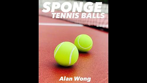 Alan Wongs Sponge Tennis Balls