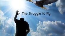 The Struggle to Fly