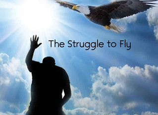 The Struggle to Fly