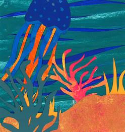 Illustration - Korallenriff