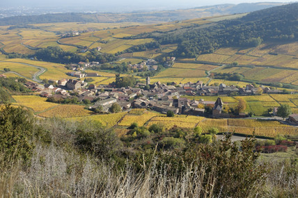 Vignoble du Mâconnais