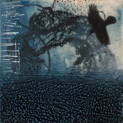 Black Bird I