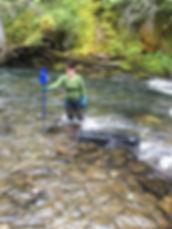 Jabbit holding sluice box in active creek.