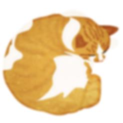 眠り猫5.png
