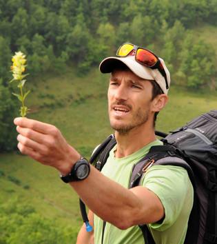 Julien Tauran.JPG