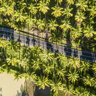 Beocean Krui May-0035.jpg