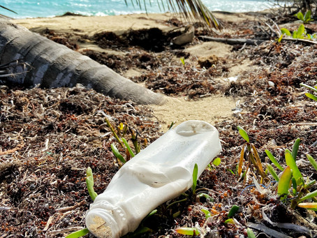 The Top 5 Ocean Plastics Documentaries You Should Watch