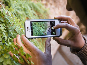 Driving Change Forward: How Conservation and Environmental Charity Organisations are Using Tech