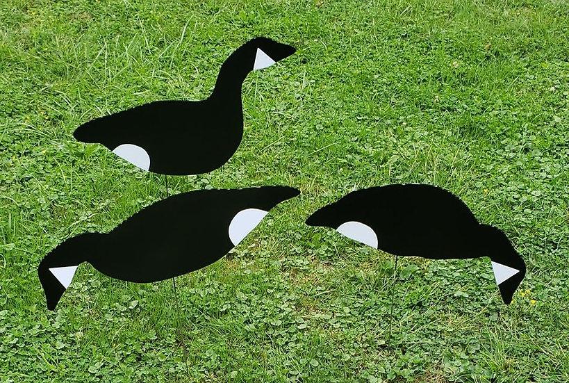 Canada goose decoys silhouettes Black N Whites