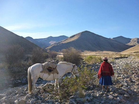 camino del inca1.jpg