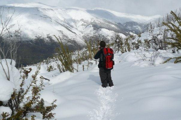 Caminata con raquetas en la nieve