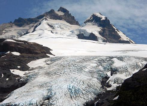 Pico Argentino.jpg