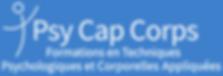 Screenshot_2020-05-13 Psycapcorps.png