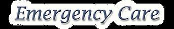 EmergencyCareText.png
