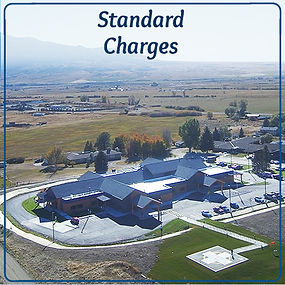 StdCharges.jpg