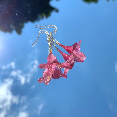 Weigela Flower Earrings