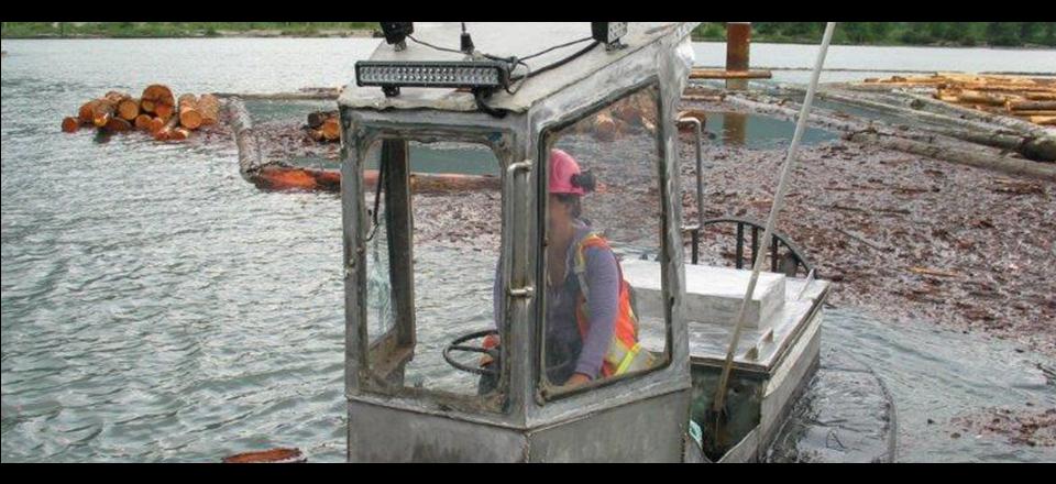 boat-at-log-sorting-site.png