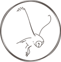 MargaloEden_brand-icon.png
