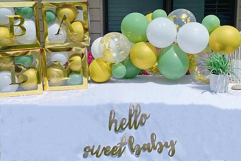 Botanical Baby Balloon Arch Kit