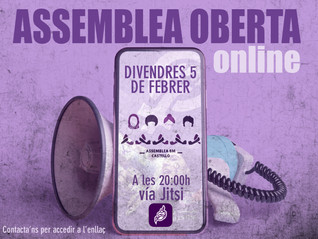 Propera Assemblea 8M Castelló